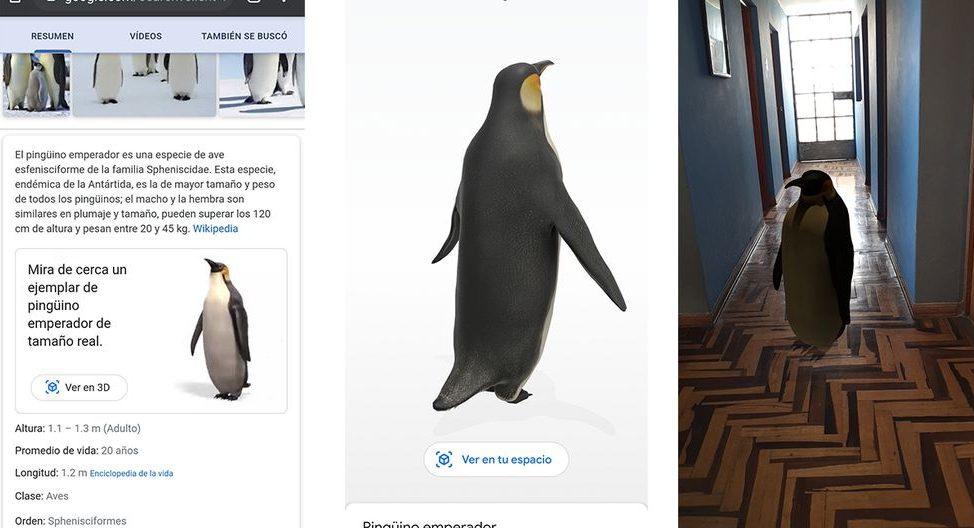 mettre pingouin 3d google